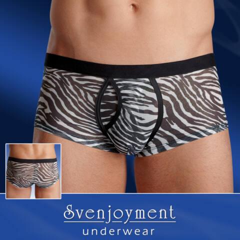 Állati férfi boxer - zebra